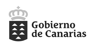 Marketing Digital en Tenerife   Clientes   Gobierno